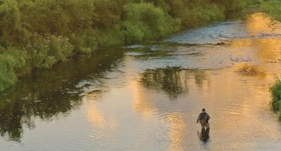 Visser in de rivier