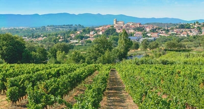 Wijngaarden bij Béziers