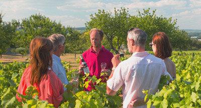 Winetasting in Burgundy