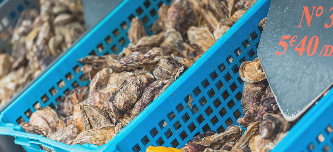 Oesters in emmer