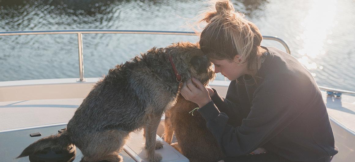 Hond op een boot